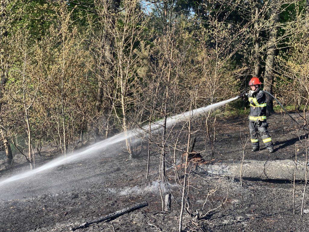 Gozdni požar Suhadolčanova – Črnuče